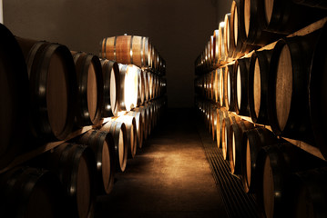 french oak barrels in the wine cellar in franschho
