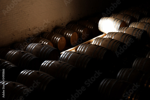 barrels in the wine cellar in franschhoek