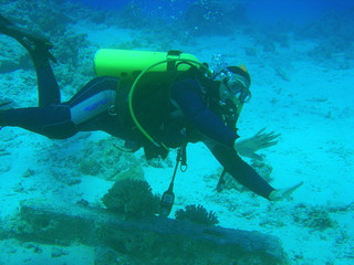 the diver near a sea-bottom