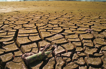 drought-1a