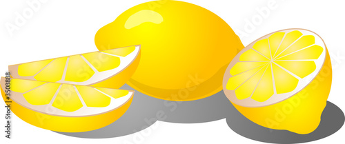 lemon slices illustration
