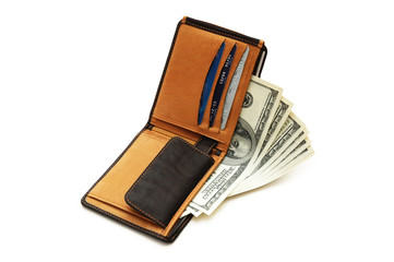 wallet with dollars and credit cards isolated