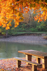 fall picnic table