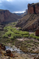 cañadón del río pinturas