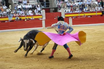 torero-07