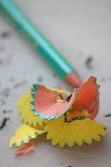 copeau de crayon