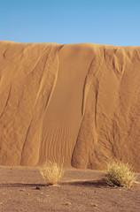 dunes-04