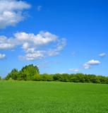 idyllic summer landscape poster