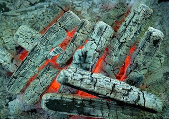 Texture. Colorful details of burning coal and wood.