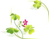 Four-leaved clover, symbol of luck. Vector frame poster