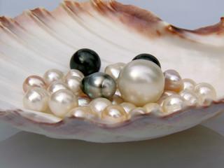 Perlenschale