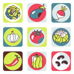 legume picto 1