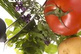 fresh herbs, vegetables, salt and mezzaluna. poster