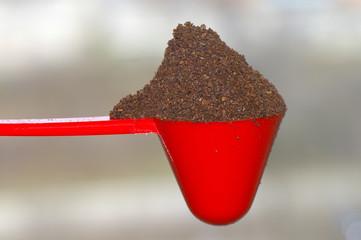 Scoop & Coffee