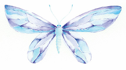 blue and purple fantasy butterfly