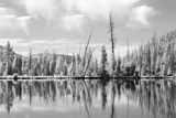 yellowstone national park shot in native infrared poster