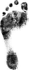 Sinlge Footprint