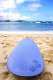 Hawaiian Surfboard poster