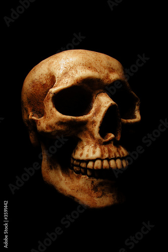 A dramatically lit Halloween skull on a black background.