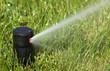 Leinwandbild Motiv a field in summer is a sprinkler watering
