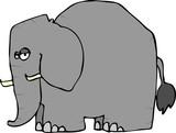 Wrinkled Elephant poster