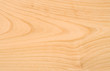 Unpolished beech wood texture without knots