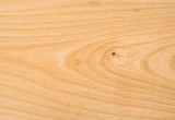 Unpolished beech wood texture with a little knot poster