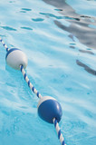 A buoy and rope swimming pool lane marker. poster