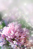 Fairy dust on lilac poster