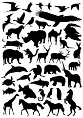 Collection of animal vector silhouettes