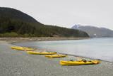 Several yellow kayaks on the beach near Haines Alaska poster