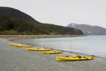 Several yellow kayaks on the beach near Haines Alaska