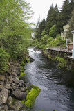 Creek running along the famous Creek Street in Ketchikan poster