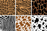 Fototapety animal prints
