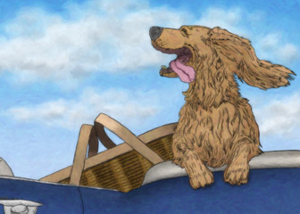 Happy dog riding in a convertible beside a picnic basket