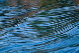 Movement in the water creating beautiful blue streaks. poster