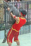 Crocodile Wrestling poster
