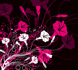 Floral with Background