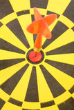 a dart on a dartboard, concept of success poster