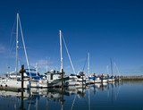 Sailboats in their stalls at marina behind the breakwater poster