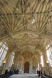 Ornate Ceiling, Bodleian Library, Oxford University poster