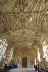 Ornate Ceiling, Bodleian Library, Oxford University