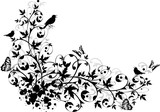 Fototapety abstract floral border
