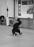 Kempo Student -- Forward Roll
