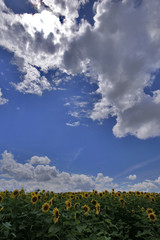 le soleil derrière les nuages