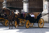 Horse and cart in Seville. Tourist attraction.
