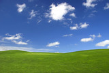 Beautiful green landscape with a great blue sky