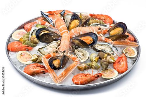 Fresh seafood - 3655618