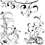 Floral elements C - popular floral segments poster