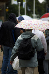 people with umbrella